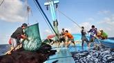 Pêche : lUE veut que le Vietnam prenne des engagements dans des actions concrètes