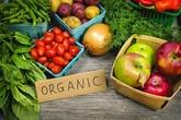 Produits agricoles bio : opportunité d'accéder au marché européen