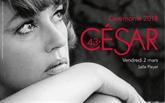 Faute damour, meilleur film étranger aux César