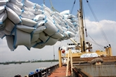 Le Vietnam pourrait exporter 6,5 millions de tonnes de riz en 2018