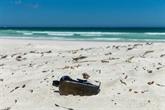 La plus ancienne bouteille à la mer connue découverte en Australie