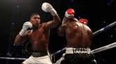 Boxe : Joshua réaffirme son envie d'affronter Wilder