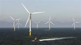 Éolien en mer: le gouvernement s'apprête à renégocier les tarifs