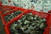 De nouvelles opportunités pour les exportations de crevettes vers l'UE