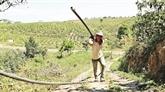 Le Tây Nguyên face à la sécheresse
