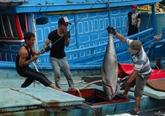 Les localités côtières luttent contre la pêche INN