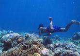 Première preuve d'une adaptation génétique à la plongée