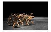 Le 9e Festival international de danse contemporaine s'ouvre à Alger