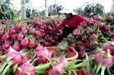 Pour promouvoir les relations commerciales Vietnam - Chine