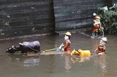 Les marionnettes vietnamiennes mises à l'honneur