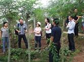 L'agriculture au centre d'une formation à Hanoï