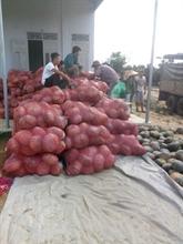 Big C aide des agriculteurs de Dak Lak