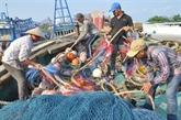 Pêche: la CE fait le bilan des avancées vietnamiennes suite au carton jaune