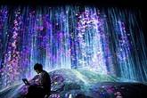 À Tokyo, un musée numérique pour repousser les frontières de l'art