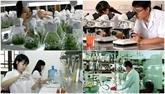 Lapplication des technologies pour le développement de la chaîne de valeur agricole