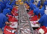 Hausse de 10% des exportations des produits aquatiques