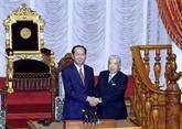 Activités du président vietnamien au Japon