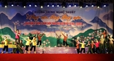 Des activités en célébration du 64e anniversaire de la victoire de Diên Biên Phu