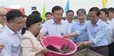 Vietnam et Chine relâchent des géniteurs dans le golfe du Bac Bô