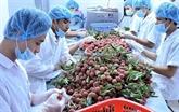 Le 2e dialogue sur la politique agricole Australie - Vietnam