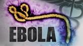 Virus Ebola: le Vietnam reste sur le qui-vive