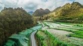 À la (re)découverte du plateau karstique de Dông Van à Hà Giang