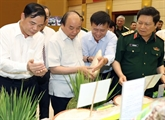 Conférence de bilan du projet de modernisation de lagriculture