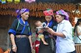 Concours d'idées de chaînes de valeur pour les ethnies minoritaires au Vietnam