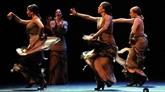 Arte Flamenco fête sa 30e édition avec les plus grands artistes actuels