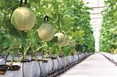 Une décharge transformée en jardin hi-tech