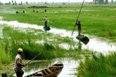 Un colloque sur la protection de l'environnement du delta du Mékong