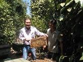 Tây Nguyên: cet homme réserve la moitié de sa vie aux abeilles