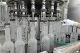 Les Polonais et leur vodka: côté pile, côté face