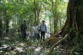 La province de Kon Tum utilise la technologie avancée pour prévenir les feux de forêt