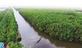 Des solutions efficaces pour conserver la biodiversité dans le Parc national de Tràm Chim