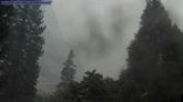 Californie: un incendie gagne du terrain près du Parc national de Yosemite