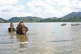 Florilège promotionnel chez Saigontourist Travel Service