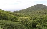 Parc national de Nui Chua: préservation de la biodiversité liée au tourisme durable