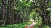 Préserver la biodiversité de Hanoï