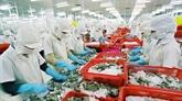 Aquaculture: l'objectif de 10 milliards d'USD d'exportation sera difficile à atteindre
