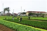 Quand maraîchage rime avec tourisme à Dà Nang