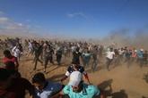 Palestine: l'ONU salue la hausse de financement préconisée par la BM