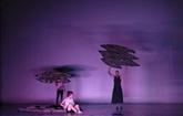 Hanoï: camp d'été de danse et de musique, un rendez-vous des jeunes talents