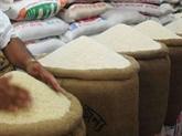 Riz: les exportations du Vietnam vers la Malaisie en forte croissance