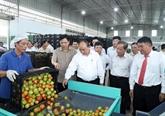 Le Premier ministre visite un modèle de l'agriculture high-tech à Lâm Dông