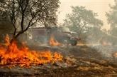 Californie: la sécheresse alimente des incendies meurtriers
