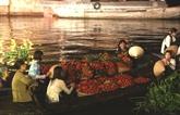 Le tourisme écologique de Tiên Giang attire les touristes