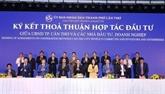 Cân Tho entame la coopération avec Vietnam Airlines et VietJet Air