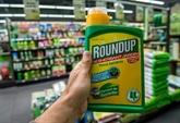 Procès Monsanto: les anti-pesticides en France exultent