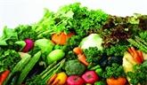 Le ravitaillement de Hanoï en produits sains est assuré